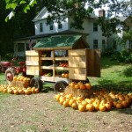 Honor Farm Stand with Veggies, Honey, Lip Balm, Candles, Pumpkins